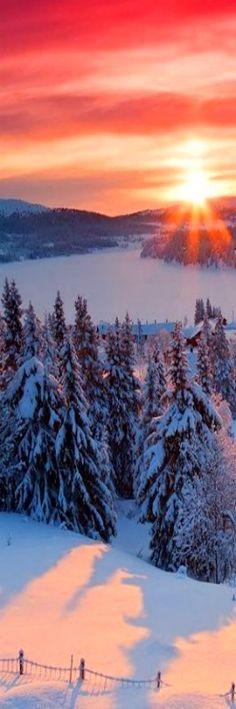 ✿ ❤ ❄️❄️ Sunrise in winter. Beautiful World, Beautiful Places, Beautiful Pictures, Snow Scenes, Winter Scenes, All Nature, Amazing Nature, Winter Beauty, Beautiful Sunrise