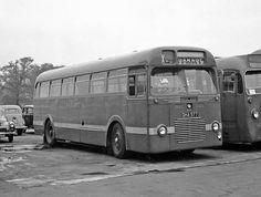 1950 BMMO LA - Midland Red 3977 Blue Bus, Red Bus, Automobile, Bus Coach, London Bus, Busses, Old Trucks, Coaches, Vw