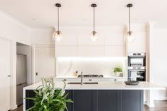Modern Shaker Kitchen, Long Kitchen, Upper Cabinets, Traditional Kitchen, Kitchen Layout, Kitchen Remodel, Kitchen Renovations, Beautiful Kitchens, Kitchen Designs