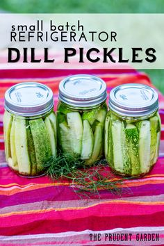 super easy, customizable and tasty! - i added sliced red onion.  Small Batch Refrigerator Dill Pickles