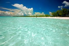 Half Moon Cay, Bahamas. By far the most beautiful place I have ever been, can't wait to return someday..