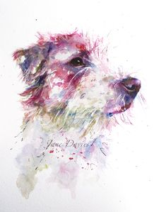 Pet portrait of a Jack Russell painted by watercolour artist Jane Davies