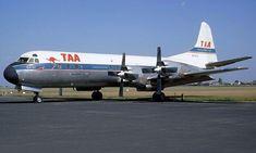 Vintage Air, Vintage Ideas, Vintage Designs, Australian Airlines, Domestic Airlines, Helicopter Plane, Air Festival, Air Travel, Transportation