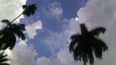Tardes de nubes.