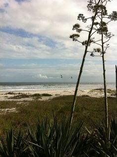 Kite surfers on Cocoa Beach #Florida