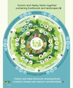 Forests and family farms are part of an integrated productive system for indigenous peoples, local forest communities, and smallholders living in forested landscapes. Together forests and family farms deliver ecosystem services and benefits for livelihoods and well-being.