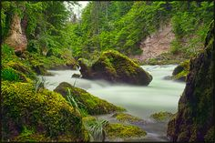 ♥♥ Wild Waters, Waterfalls, Austria, River, Country, Outdoor, Outdoors, Stunts, Rural Area