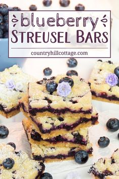 Sink your teeth into delicious blueberry streusel bars! Layers of crumbly streusel and sweet blueberry filling add up to a scrumptious bar cookie. Blueberry Squares, Blueberry Bars, Frozen Blueberry Recipes, Strawberry Recipes, Sugar Free Recipes, Baking Recipes, Fun Desserts, Dessert Recipes, Canned Blueberries