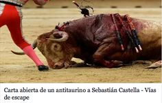 Carta abierta de un  #antitaurino  a Sebastián Castella
