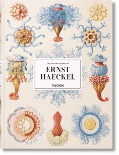 German biologist and artist Ernst Haeckel dedicated his life studying far flung flora and fauna, drawing each of their peculiar specificities with an immense scientific detail. Haeckel made hundreds of such renderings during his lifetime, works which were used to explain his biological discoveries
