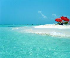 Playa Norte, #Isla Mujeres, Mexico.