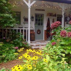 Porch Veranda, Front Porch, Outdoor Structures, Brewing, Plants, Birds, Instagram, Brow Bar, Bird