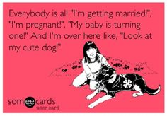 My life summed up in an e-card!