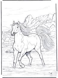 Coloring Pictures Of Horses Fresh Horse Coloring Pages for Adults Best Coloring Pages for Kids Horse Coloring Pages, Coloring Pages To Print, Colouring Pages, Coloring Pages For Kids, Coloring Books, Kids Coloring, Free Coloring, Diy Y Manualidades, Free Horses