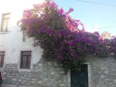A house in Bodrum