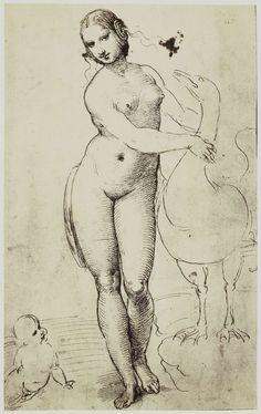 Raffaello, Leda e il cigno, Windsor Castle, disegno (riproduzione fotografica del Rijksmuseum)