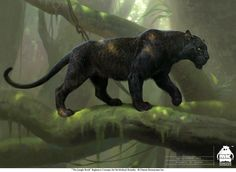 ArtStation - The Jungle Book: Bagheera Concept, Michael Kutsche