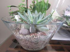 For indoor use by treelinedesingz.com Terrarium, Indoor, Plants, Home Decor, Terrariums, Interior, Decoration Home, Room Decor, Plant