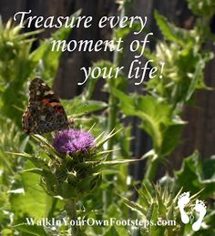 Treasure Every Moment of Your Life from Walk In Your Own Footsteps by Laura Pallatin