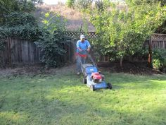 Gardening Services, Santa Barbara, Lawn And Garden, Lawn Mower, Outdoor Power Equipment, Gardening, Lawn Edger, Grass Cutter, Garden Tools