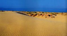 #playas #Elche #Elx #beach #beaches #ElCarabassi #arenalesdelsol #dunas #mediterraneo #spain #visitelche
