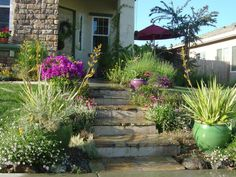 This xeriscaped, Mediterranean-style landscape brings color and adds interest to the front entrance of a suburban home.