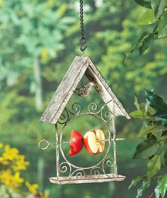 Hanging Fruit Feeder