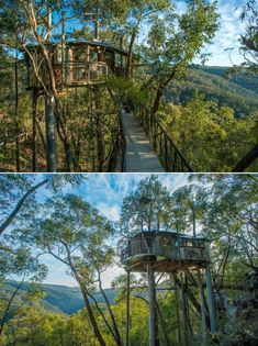 Remember the dreamy Wollemi Wilderness Treehouse on the edge of the World Heritage Blue Mountains that we featured last year? This treehouse was under maintenance in 2019, but now you can book it for a peaceful stay in the wilderness. It takes under two hours' from Sydney, Australia to reach this secret treehouse that overlooks Bowen's Creek Gorge and the World Heritage Blue Mountains. Blue Mountains Australia, Treehouses, In 2019, Another World, Sydney Australia, Sky High, Mother Nature, Wilderness, Amy