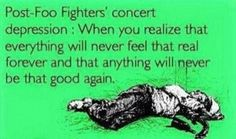 And though I've never been to a Foo concert, I already know this lol