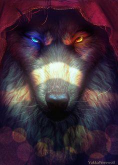 """""""Tal vez caperucita roja no siempre fue tan buena como dicen ser y por eso acabó siendo el lobo feroz"""" (frase hecha por mi:Alisson16)"""