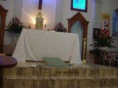 la tumba del p. Variara en Agua de Dios