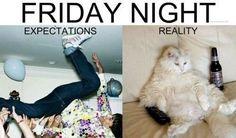Last Friday Night REALITY