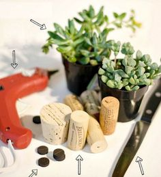 How to make wine cork magnet planters with succulents, magnets, wine corks. Full tutorial with pictures on how to make wine cork magnet planters for fridge. Wine Cork Art, Wine Cork Crafts, Wine Corks, Cactus, Cork Stoppers, Diy Planters, Succulent Planters, Succulent Display, Succulent Ideas