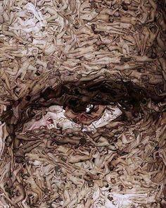 Spencer Tunik - The Naked Eye
