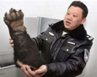 "Seriously sign this PETITION: Stop Making ""Bear Paw Soup""  in ASIA.  Some Asian cultures use a special guillotine to amputate bear paws, sometimes while the bear is still alive. The animal is often first beaten- as there is a belief that the adreneline rushing through the body makes the meat more tender. They also eat the rest of the bear- by lowering into a fire, cooking it alive and dying a slow death."
