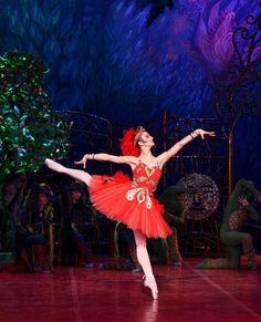 Alexandra Timofeyeva in The Firebird. Firebird, Yulia Rose, Swan Lake, Arts And Entertainment, Ballet Skirt, Seasons, London, Painting, Dancers