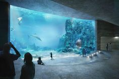 Galeria de Vencedores do Concurso Basel Aquarium - 3