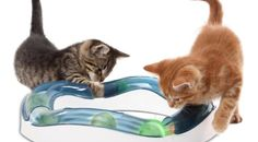 Cats Toys Ideas - The 7 Best Battery-Operated Toys to Keep Your Cat Active - Ideal toys for small cats Diy Cat Toys, Pet Toys, Cool Cats, Cool Cat Trees, Diy Jouet Pour Chat, Best Interactive Cat Toys, Cat Entertainment, Gatos Cool, Cat Brain