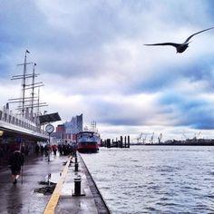 typisch Hamburg Bilder