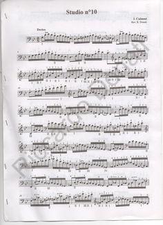 """BRIEF EXERCISES to become a """"virtuoso"""" THE VIRTUOSO DOUBLE BASS - Vito D.Liuzzi…"""