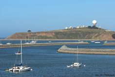 Why is the Half Moon Bay Harbor So Famous? | Mill Rose Inn