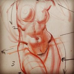 5 min Drawing Demonstration-Female Torso- talking about AnglesTilts, anatomical landmarks, overlaps, wedging and leading viewer's eye across the form.. January 03, 2017 at 0857PM.jpg