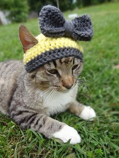 Custom Cat and Dog Hat - The Sunshine and Pewter Hat for Cats and Small Dogs - Cat Dog Fashion Bonnet Hat