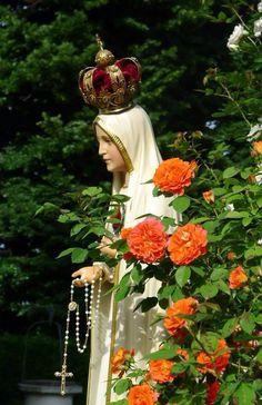 Roses of Fatima