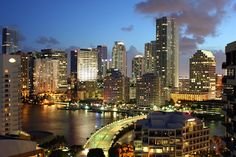Miami Skyline At Dusk...wouldn't be complete without the water and palm trees
