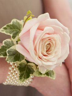 Its subtle shade of soft pink gives this attractive rose wrist corsage a wonderfully vintage feel. Set on a classic pearl wrist band, this pretty adornment has a timeless style that is simply enchanting.