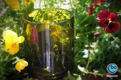 #boglasses riflette la voglia di primavera! Verde bottiglia verde Natura verde speranza!