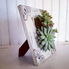 Vertical Succulent Planter Garden by VerticalFlora on Etsy
