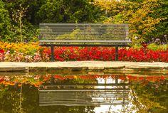 Montreux, ma ville ! Jardin de la Maladaire