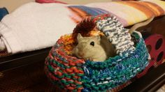 Knitted Gerbil Basket Carrier by gerbilgal on Etsy